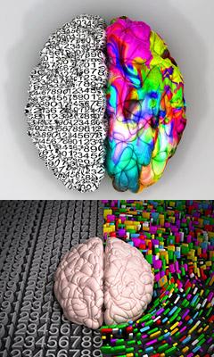 Neuroplasticity And Meditation