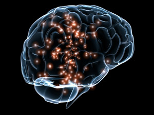 What Is Neuroplasticity & Meditation